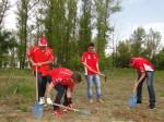 Plantare copaci Dinamo-Mitsubishi
